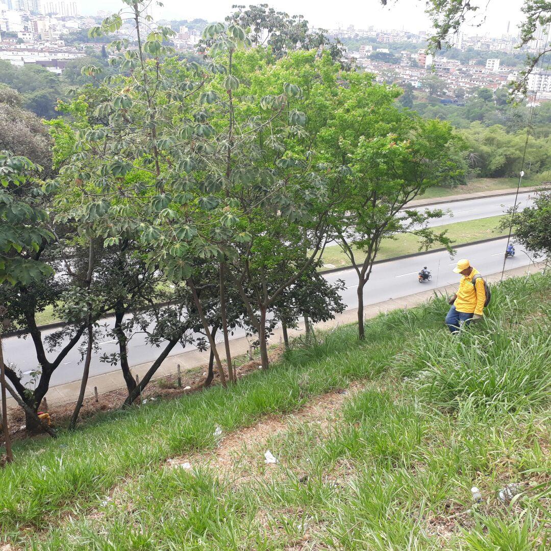 Realizamos recuperación de talud cercano al barrio La Victoria