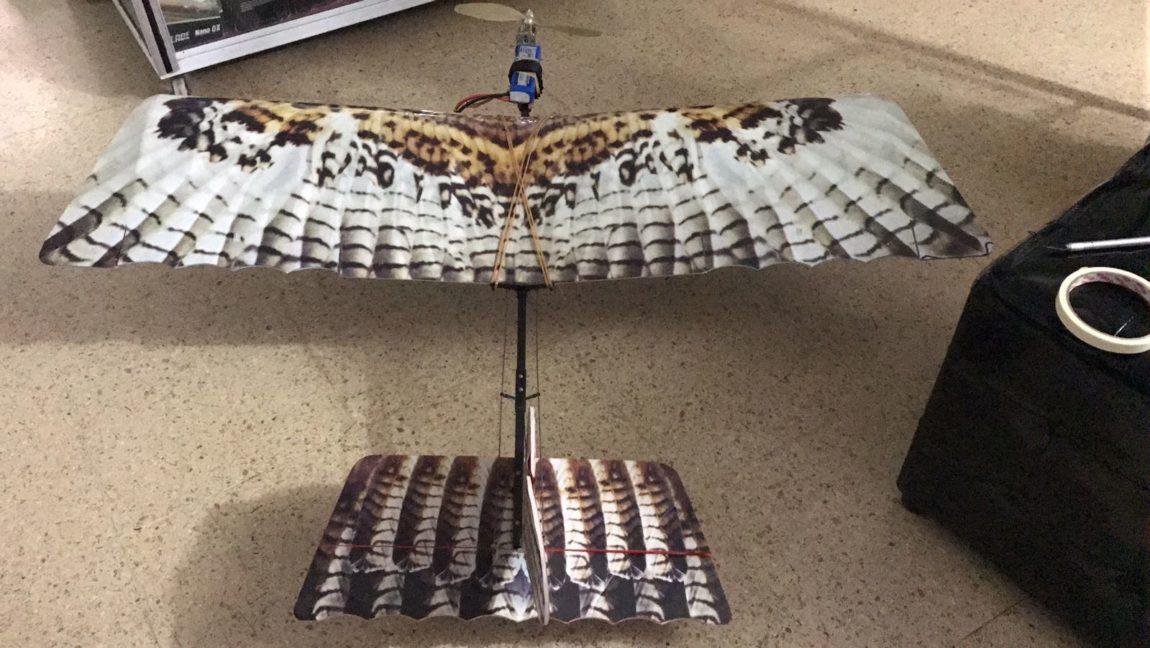"""EMAB S.A E.S.P implementara un aeromodelo en forma de águila para dispersión de gallinazos en """"El Carrasco"""""""