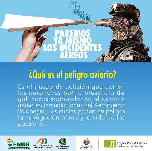 Plan de manejo ambiental, disminuyó riesgo de peligro aviario en Bucaramanga en el 30%
