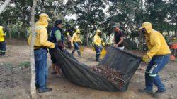 La EMAB S.A. E.S.P. continúa con su labor de limpieza en Bucaramanga